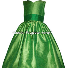 Tinkerbell Fairy Dress in Shamrock Green