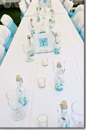 Tiffany Blue & Black flower girl dresses & themed wedding