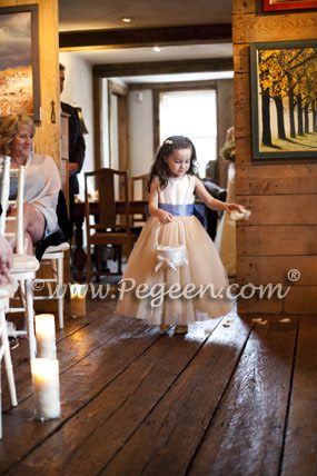 Ivory and Blue and Gold Silk ballerina tulle flower girl dresses