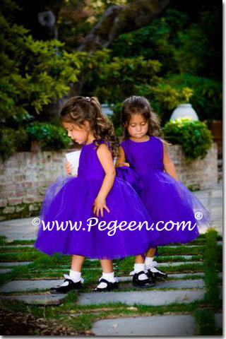 Royal Purple Tulle flower girl dresses with layers of tulle