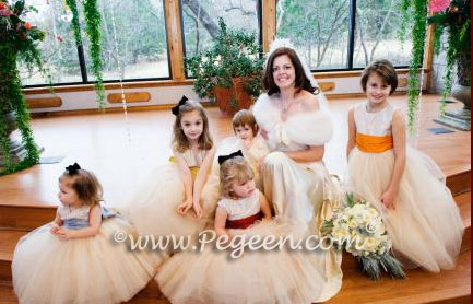 Tulle flower girl dresses in Degas Ballerina style by Pegeen