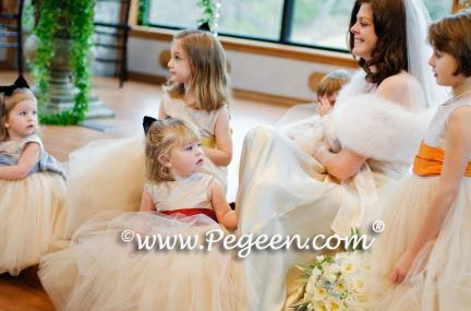 Flower Girl Dresses in Multi Colored Silk Sashes and Champagne Tulle