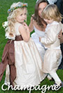 Flower girl dresses in champagne