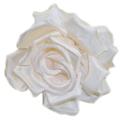 Ivory Back Flower