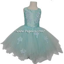 Aqua Romantic Tutu for a Ballet Customer