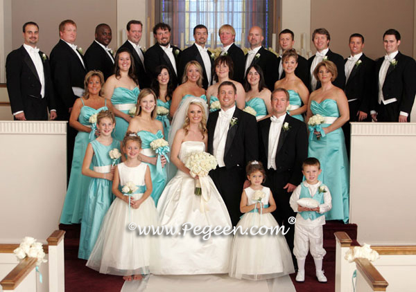 Tiffany Blue wedding party