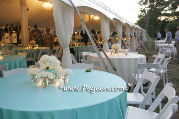 Pegeen.com Wedding of the Year - Tiffany Blue theme wedding