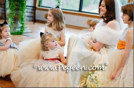 multiple Degas Inspired Ballerina Style Tulle Flower Girl Dress 402
