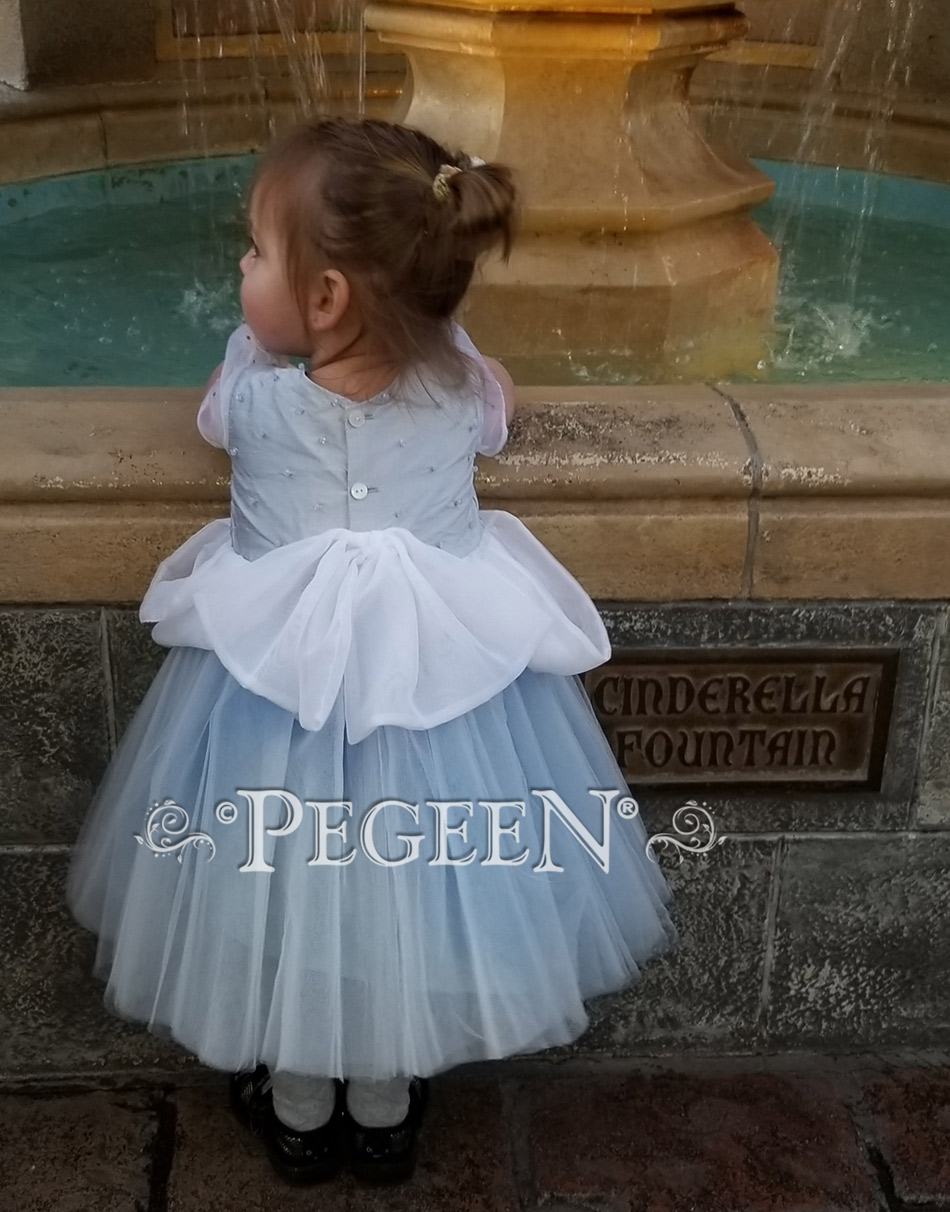 Cinderella Toddler silk and tulle flower girl dress Disney World visit