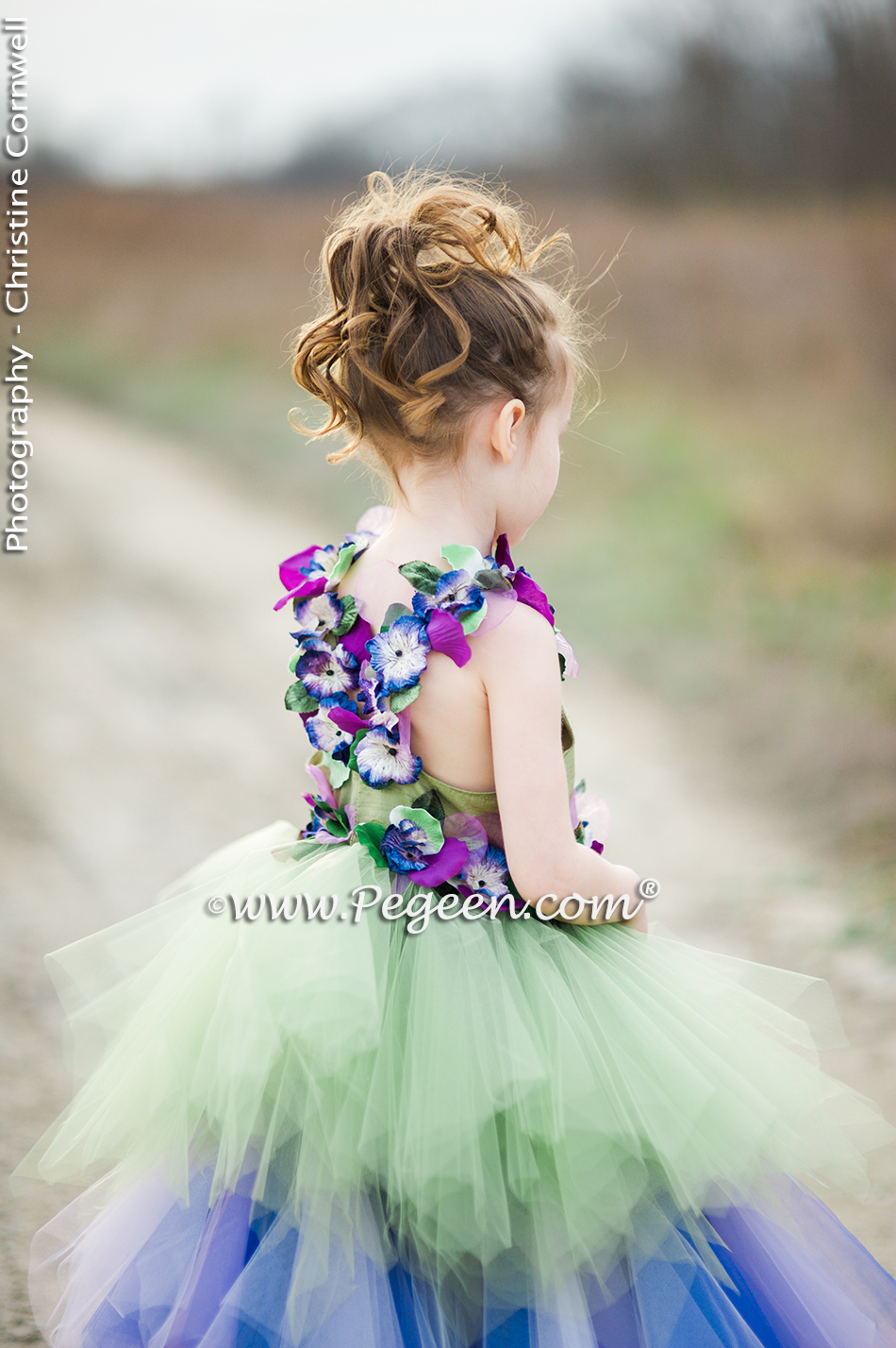 Purple and Green Fairy Tale Tulle Cotillion Dress - Pegeen Style 920
